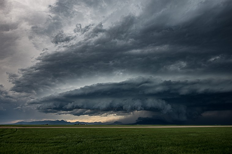 First Storm Shelf